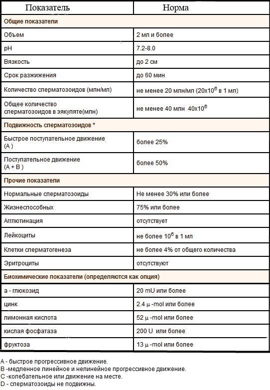 Сдать спермограмму в новосибирске - цены в евромед клинике