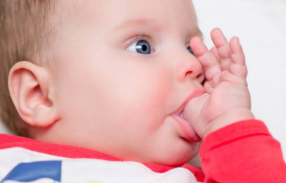 Врождённые физиологические рефлексы — википедия