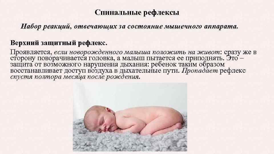 Врождённые физиологические рефлексы — википедия. что такое врождённые физиологические рефлексы