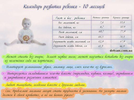 10 месяцев ребенку – чем может похвастаться малыш, и как развивать кроху?
