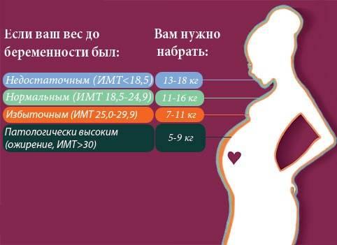 Набор веса при беременности, норма прибавки веса по неделям, причины лишнего веса