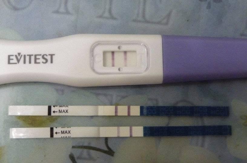 9 день после переноса эмбрионов