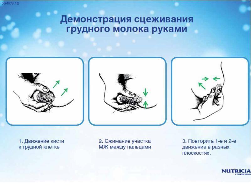Как часто и правильно сцеживать грудное молоко руками после кормления: и при какой температуре его хранить