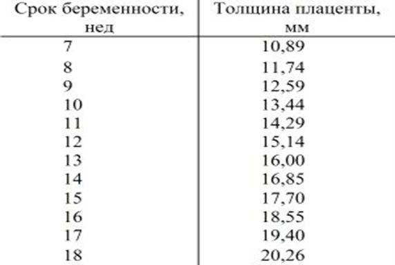 Таблица степеней зрелости плаценты по неделям и толщина. чем грозит раннее созревание - медицинский портал
