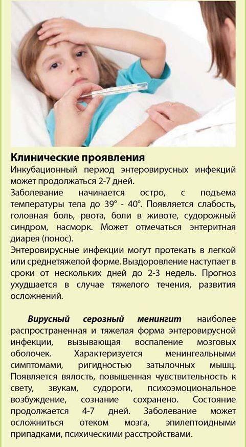 Энтеровирусная инфекция. энтерит. метеоризм.