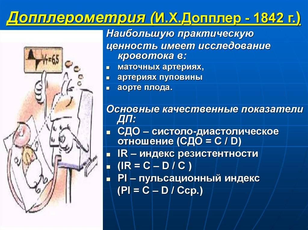 Пуповина — большая медицинская энциклопедия