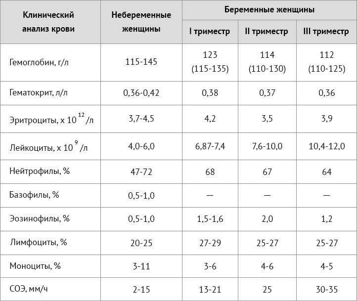 Повышенные лейкоциты в спермограмме