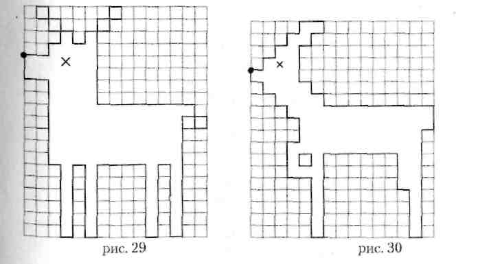 Графические диктанты: рисунки по клеточкам для 1 и 2 класса, дошкольников, легкие для начинающих, сложные, узоры, маленькие и большие картинки + схемы и фото - женская жизньженская жизнь