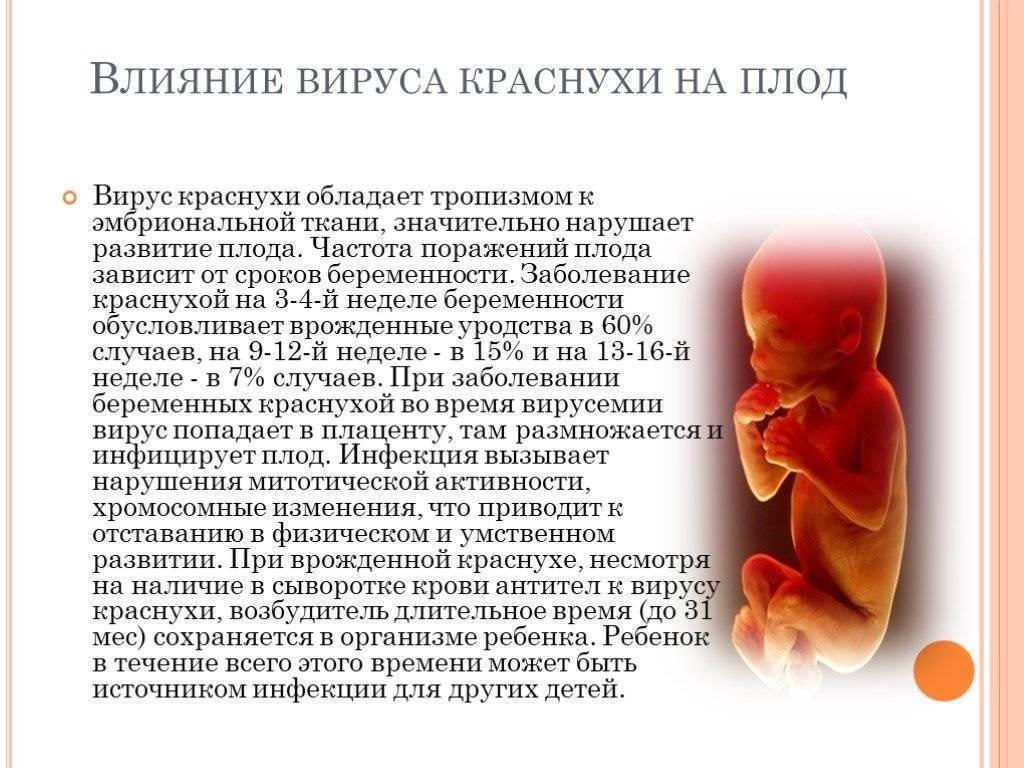 Опасные сроки беременности: самый сложный внутриутробный возраст для плода