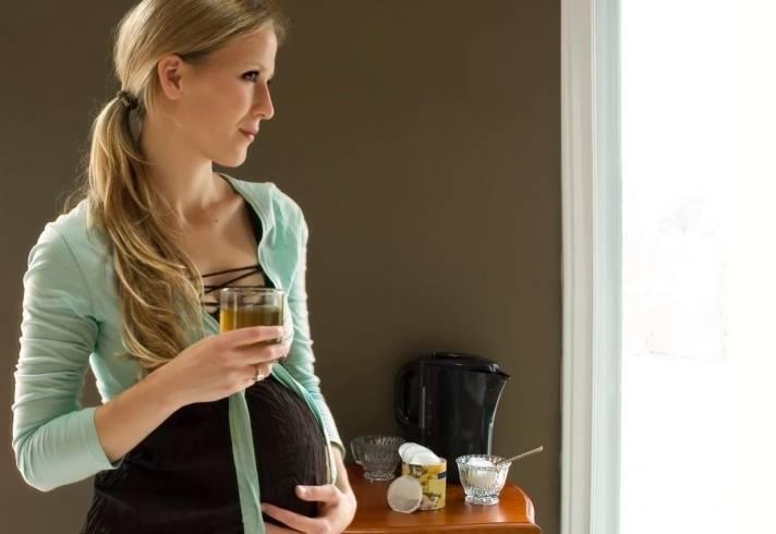 Мелисса во время беременности: друг или враг?