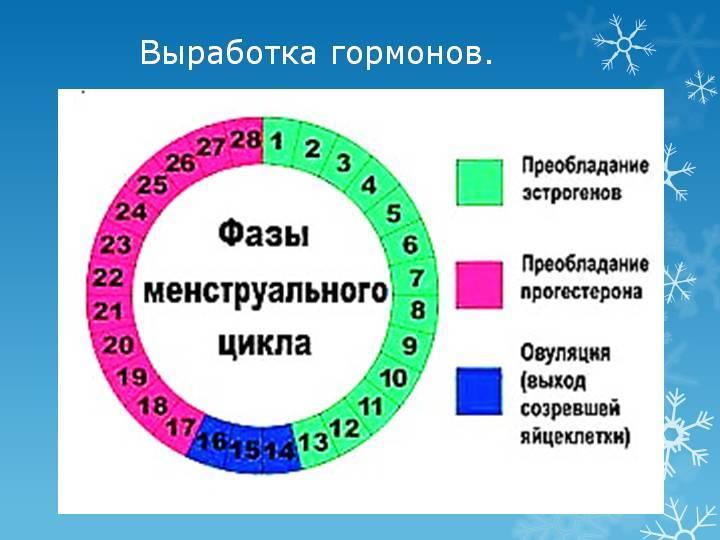 Что такое фертильные дни у женщин. как определить период и окно фертильности в женском календаре | образ жизни для хорошего здоровья