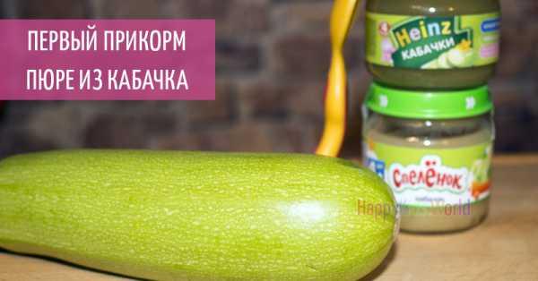 Детские пюре с кабачком: плюсы и минусы прикорма кабачком, обзор производителей ~