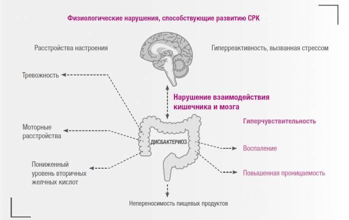 Психосоматика запора (полное описание причин из практики)