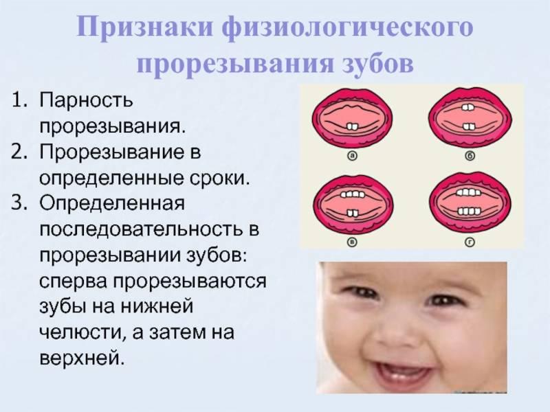 Когда начинают резаться зубки: как понять и чем помочь младенцу