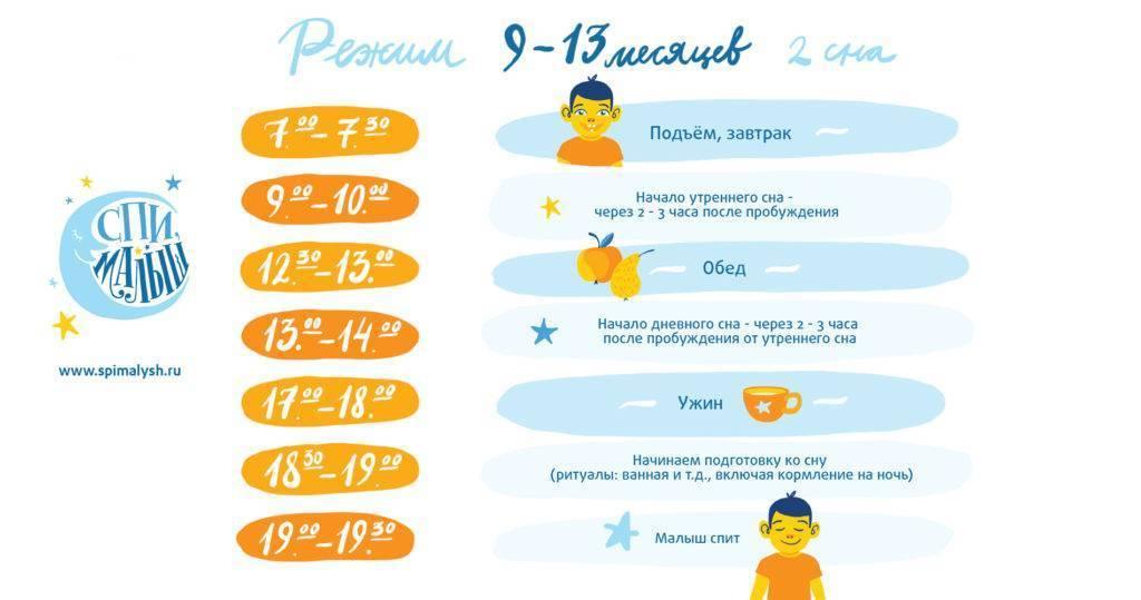 Режим дня ребенка в 9 месяцев. примерный распорядок дня по часам