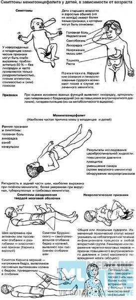 Менингит: симптомы, признаки, лечение – напоправку – напоправку
