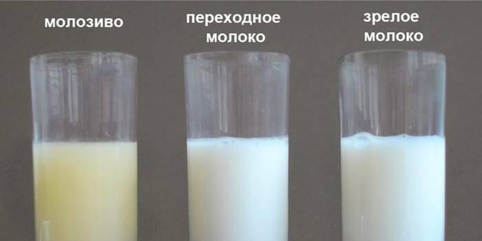 Польза грудного вскармливания - чем полезно грудное молоко - agulife.ru