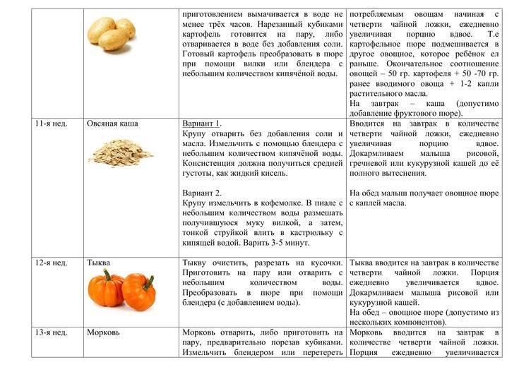 Алтайский диетолог объяснила, как вводить прикорм и почему мясо дают раньше