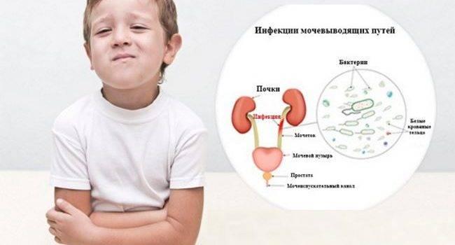 Чем лечить гайморит у ребенка, симптомы и лечение у детей острого хронического гайморита