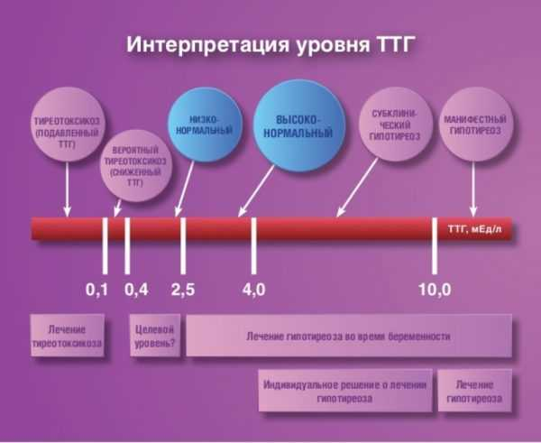 Анализ на ттг【тиреотропный гормон】- расшифровка и нормы