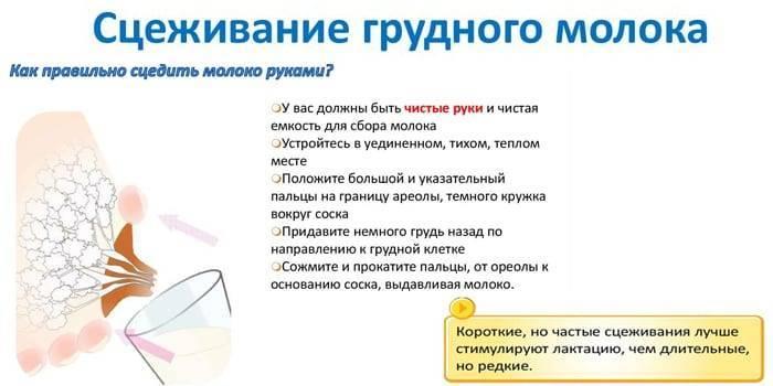 Как сцеживать грудное молоко руками при застое: доктор комаровский