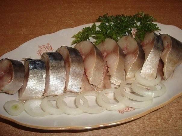 Какую рыбу можно кормящей маме при грудном вскармливании: селедку, соленую, копченую, жареную, сушеную, красную