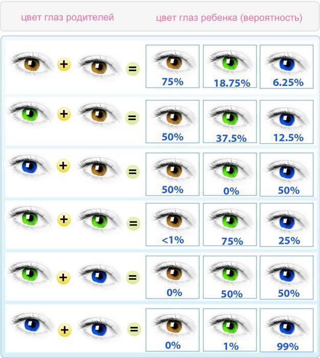 Когда у новорождённых меняется цвет глаз
