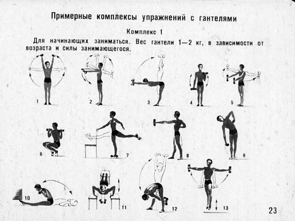 Упражнения с гантелями для детей: зарядка для детей 7-10 лет