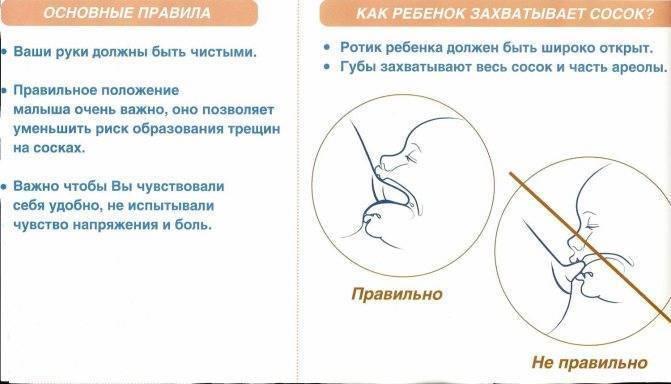 ᐉ как уменьшить лактацию при отлучении по комаровскому. как остановить лактацию с помощью перетягивания груди? социальная жизнь женщины при окончании лактации - mariya-mironova.ru