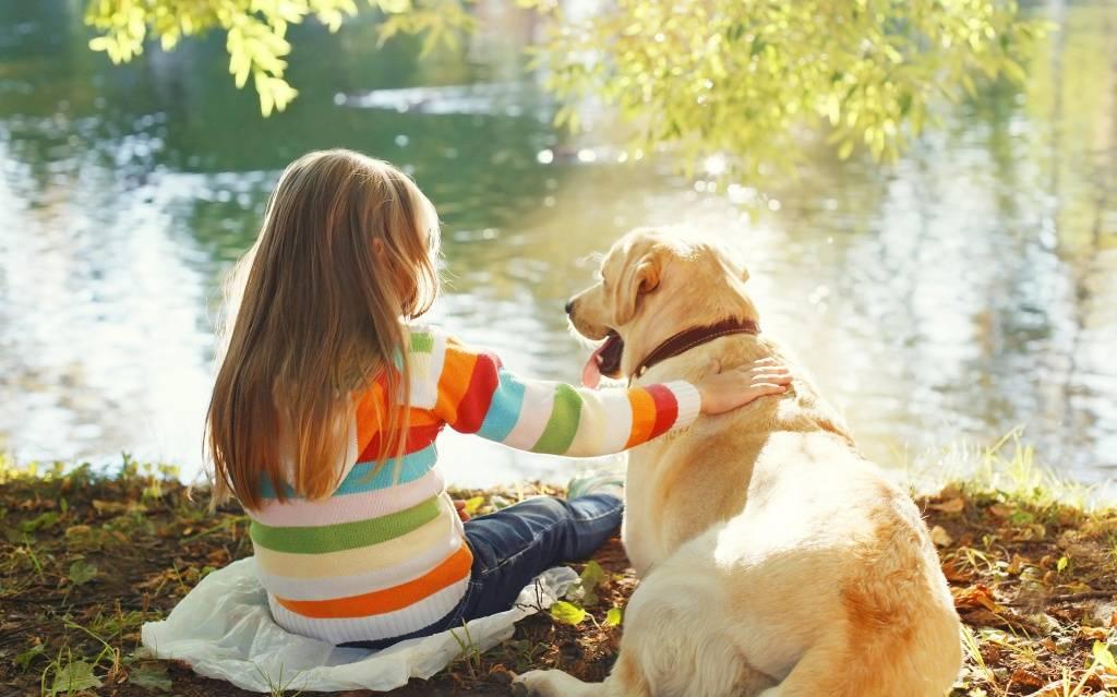 Дети и домашние животные: важные советы психолога