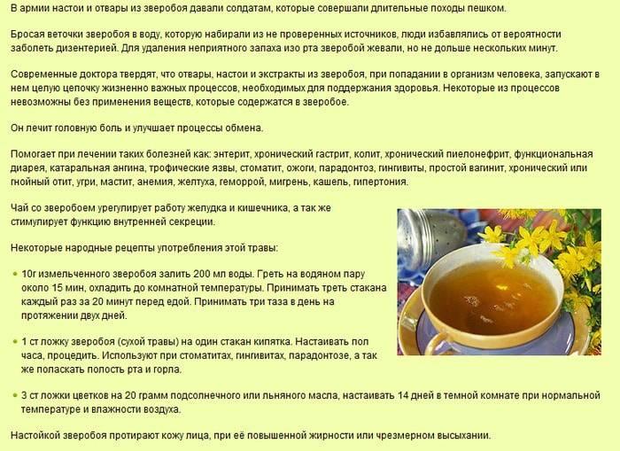 Чабрец. лечебные свойства и противопоказания