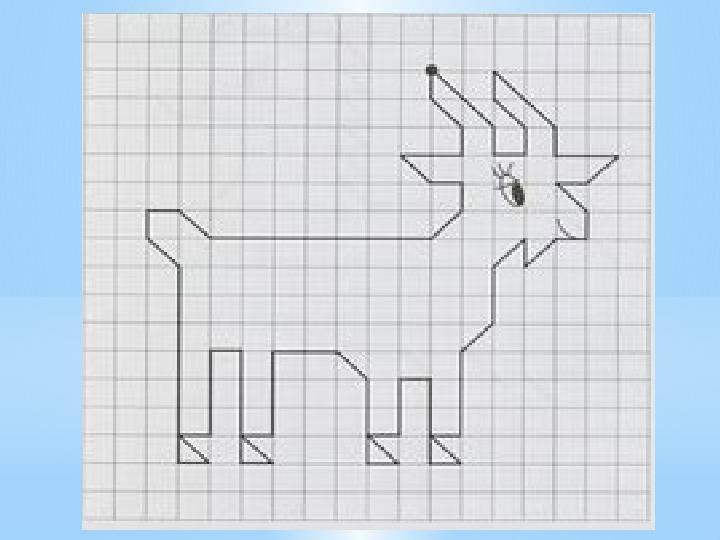 Графические диктанты: рисунки по клеточкам для 1 и 2 класса, дошкольников, легкие для начинающих, сложные, узоры, маленькие и большие картинки + схемы и фото