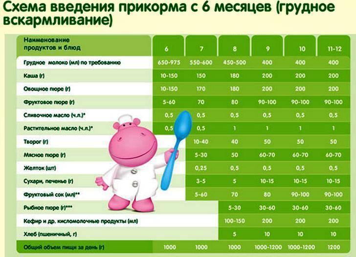 Таблица прикорма при искусственном вскармливании