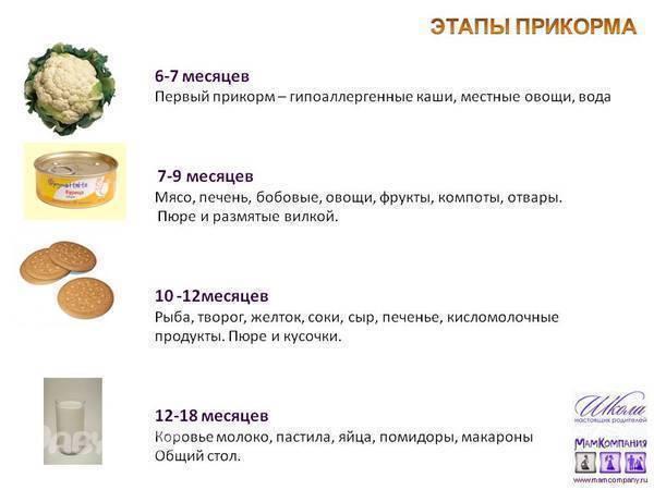 Чернослив прикорм- энциклопедия детское питание
