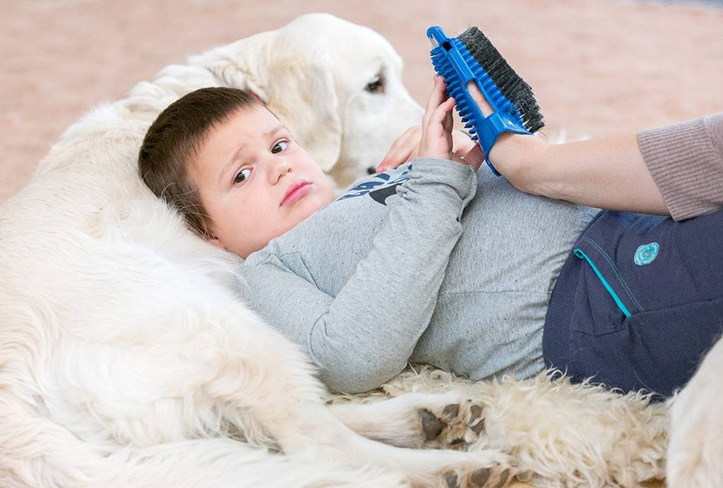 Особый ребенок и собаки. репортаж из центра канис-терапии (+фото)   православие и мир