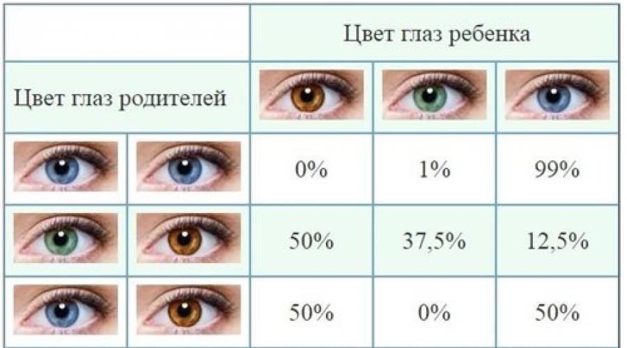 Какие глаза будут у ребенка — таблица вероятностей