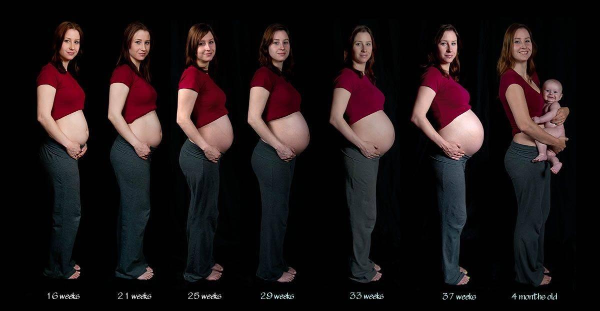 5 месяц беременности — какой живот и плод, что можно и нельзя, ощущения на 5 месяце беременности