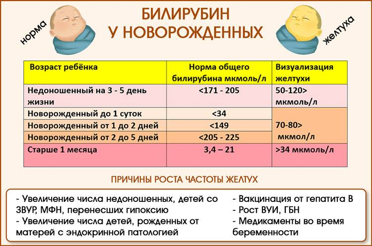 Когда у малыша пройдет младенческая желтуха?