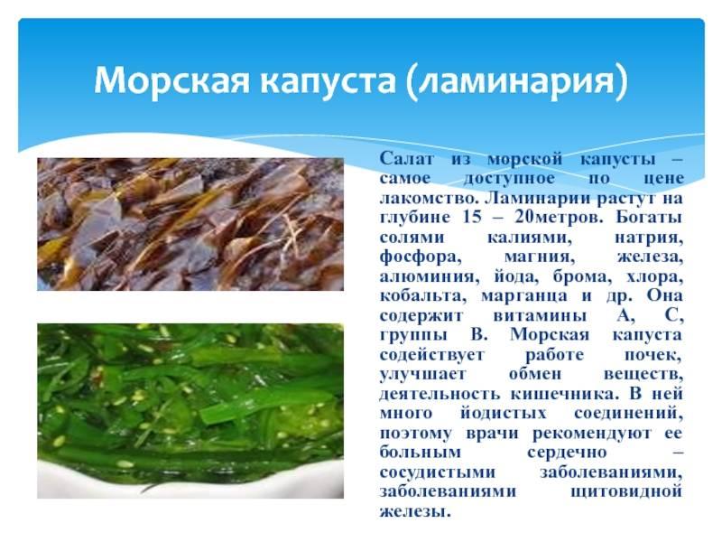 Морская капуста при беременности: можно ли беременным есть ламинарию? ее польза и вред, применение в гинекологии