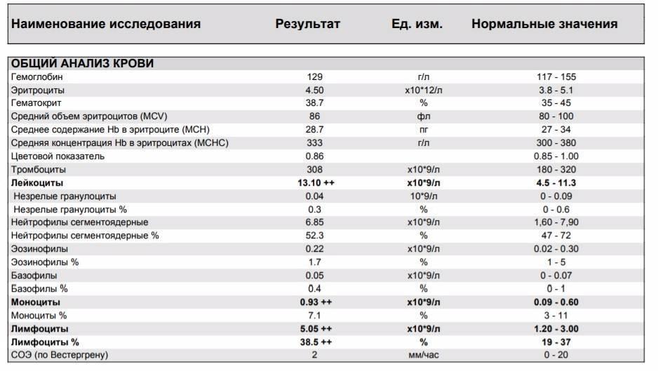 Моноциты повышены у ребенка: о чем это говорит? причины повышенных моноцитов в крови у детей