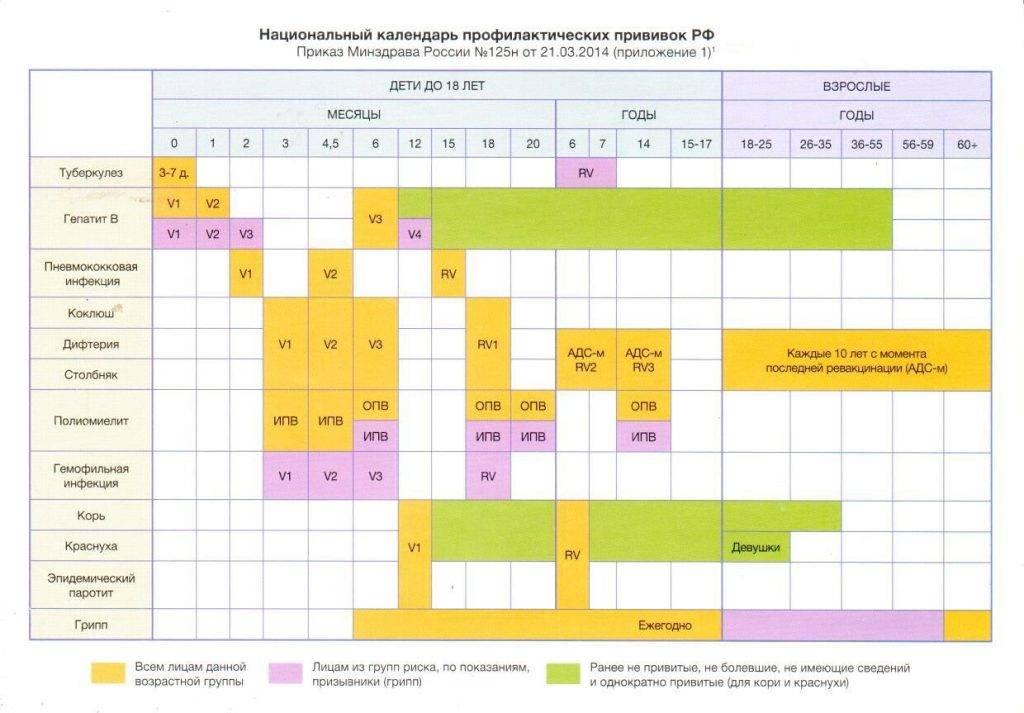 Адсм взрослым и детям: назначение прививки, график, побочные эффекты и осложнения