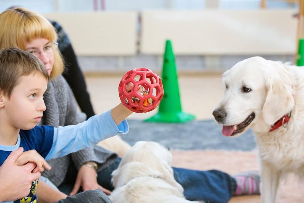 Канистерапия - лечение собаками детей-инвалидов, аутистов