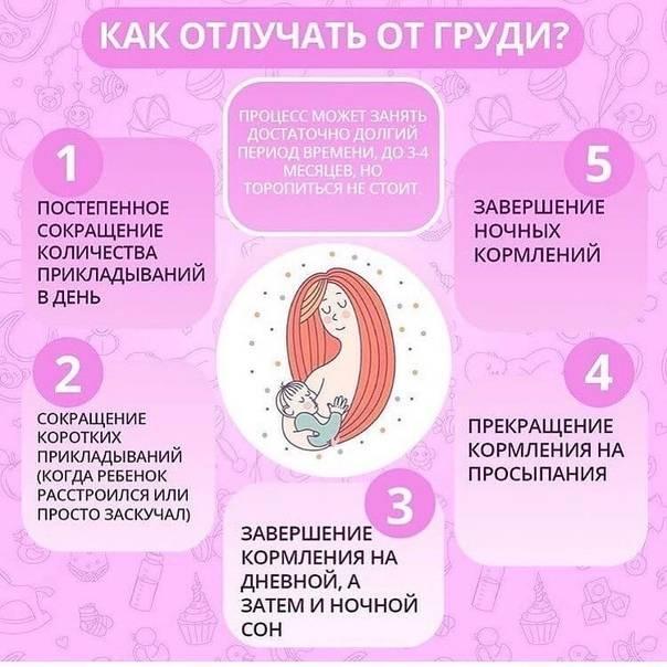 Комаровский: отлучение от грудного вскармливания. советы доктора комаровского