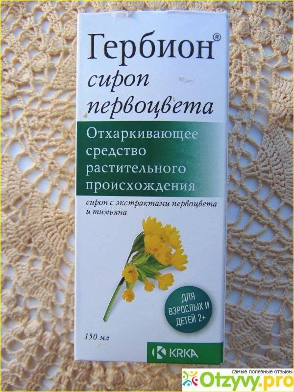 Подорожник - лечебные свойства и применение лекарственного растения