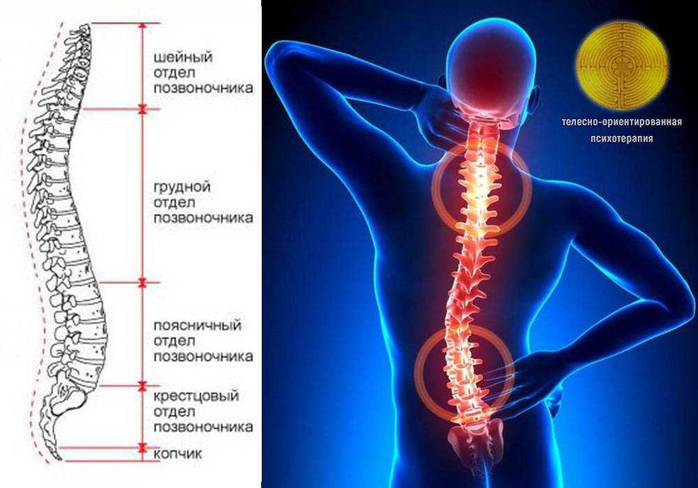 Спина бифида (расщепление позвоночника) - лечение, симптомы, причины, диагностика | центр дикуля