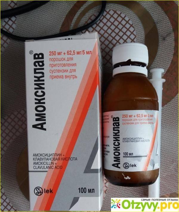Амоксиклав® (amoksiklav®)
