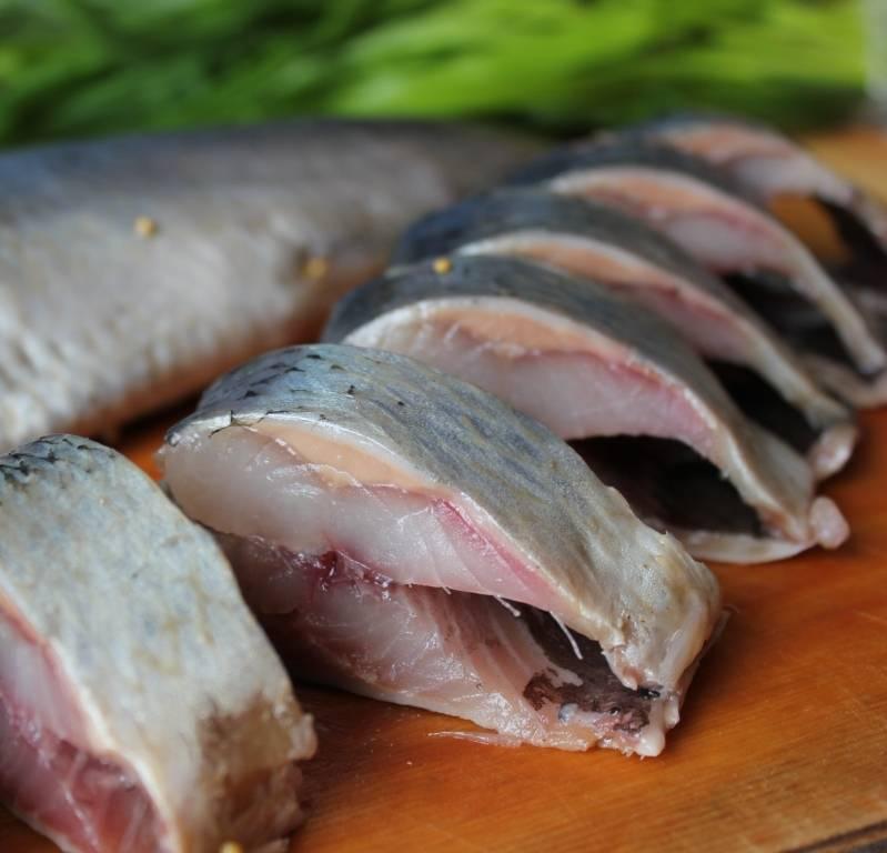Правила употребления рыбы при грудном вскармливании