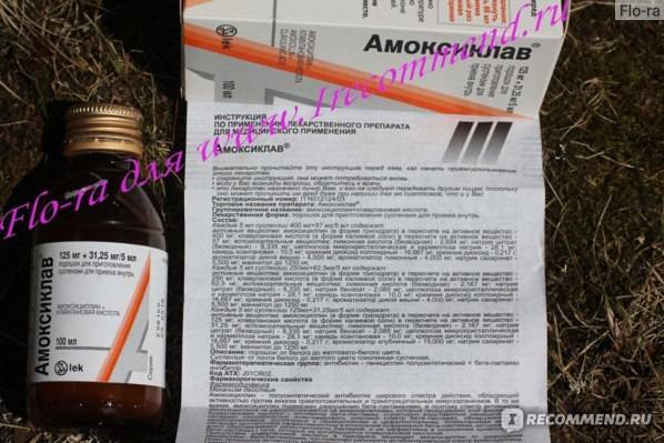 Таблетки и суспензия амоксиклав: инструкция по применению, цена, отзывы врачей, аналоги. дозировка для детей и при беременности - medside.ru
