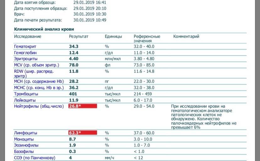 У ребенка повышены моноциты: 12 причин, результаты общего анализа крови, лечение