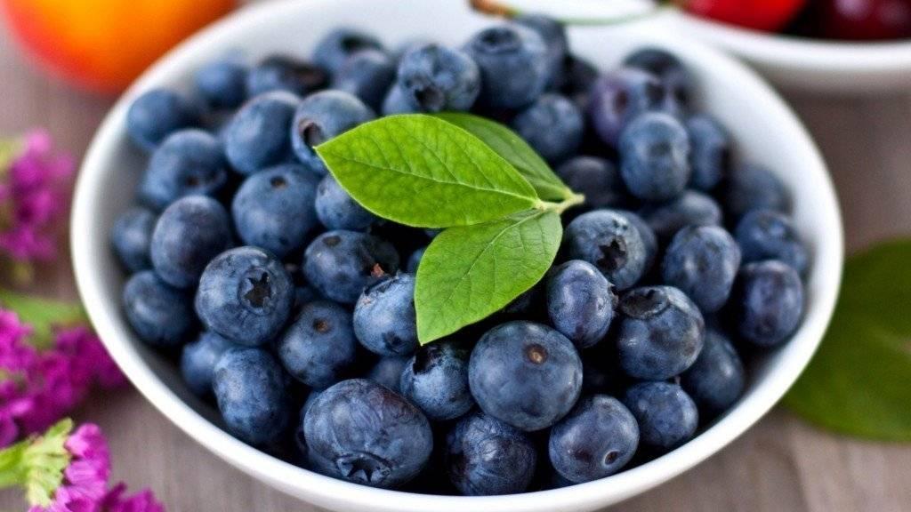 Ягоды при панкреатите: какие можно и какие нельзя? | компетентно о здоровье на ilive